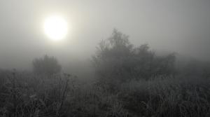 Freezing frost in a field