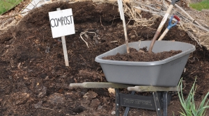 Compost pile with wheelbarrow.