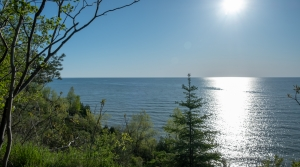 A view of Lake Michigan from Lion's Den Gorge Nature Preserve