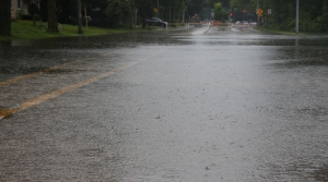 Read full article: Storms Leave Thousands Without Power In Wisconsin