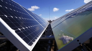 Read full article: Foxconn, WEC Energy Talk Solar To Meet Electrical Needs
