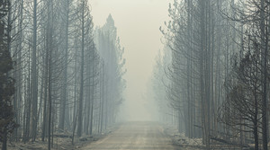 Read full article: Smoked Out: As Wildfires Ravage Canada And Western US, Wisconsin's Air Quality Is Challenged