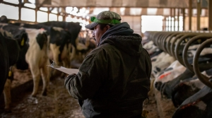 Read full article: As Trump Calls For Immigration Crack Downs, Dairy Industry Worries About Declining Work Force