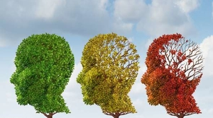 Read full article: Zorba Paster: Good News About Dementia Prevention