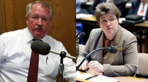 Read full article: Wachs And Vinehout Vie For 'Purple' Part Of State In Democratic Primary