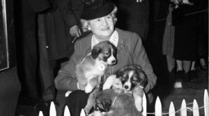 Read full article: Political Animals: Politicians And Their Dogs