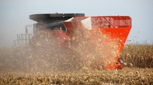 Read full article: Study: As Soil Opens For Ethanol Feedstocks, Out Comes The CO2
