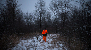 Read full article: 2018 Was Wisconsin's Safest Gun Deer Season On Record