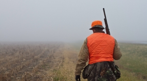 Read full article: DNR Restarts Hunter Safety Courses In Face Of Lawsuit