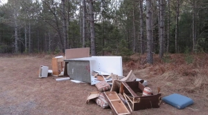Read full article: Illegal Dumping Increases On National Forest Land