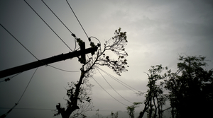 Read full article: Wisconsin Utility Companies Helping Restore Power In Puerto Rico