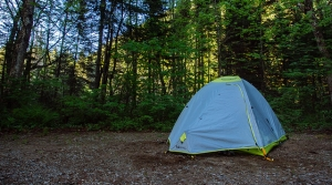 Read full article: State Parks Director Promises Transparency, Review Of Camping Fees