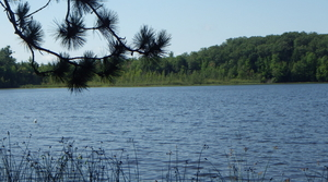 Read full article: Agreement Protects 1 Of Wisconsin's Remaining Undeveloped Lakes