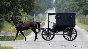 Read full article: Lawmakers Consider Regulations For Horseshoes Used By Amish