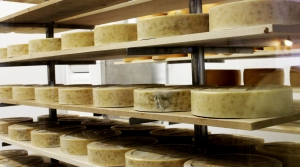 Read full article: With 20-Year Lows And Record Highs, Cheese Prices Ride Roller Coaster During Pandemic