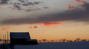 Read full article: Walker Urging Farmers To Document, Report Losses After April Snowstorm