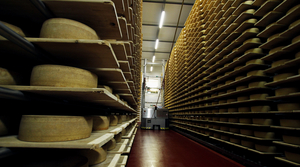 Read full article: Wisconsin Produced Record 3.37B Pounds Of Cheese In 2017