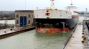 Read full article: US Senate Set To Take Up Great Lakes Ballast Water Discharge Bill