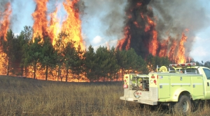 Read full article: Wisconsin Forest Advocates Back Changes To Wildfire Funds