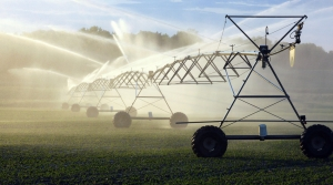 Read full article: Groundwater Quality A Cause For Concern For Some Wisconsin Voters