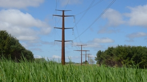 Read full article: Farmers, Residents Of Southwestern Wisconsin Voice Concerns About Proposed Transmission Line
