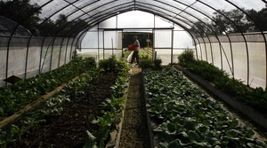 Read full article: Farm Bill Provision Could Protect Wisconsin Farmers From Organic Fraud