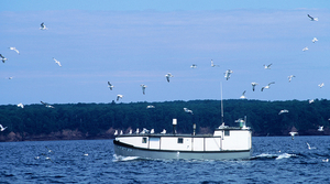 Read full article: Commercial Fishing Operations Reporting Record Catch Along Lake Superior's South Shore