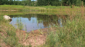 Read full article: Northern Wisconsin Project Seeks To 'Slow The Flow' Of Stormwater