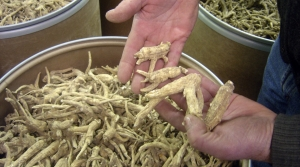Read full article: Escalating China Tariffs On Ginseng Create 'Shock To The System' For Wisconsin Farmers