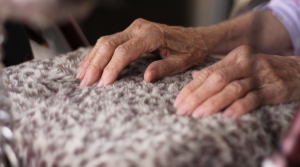 Read full article: DOJ Elder Abuse Task Force Releases Draft Legislation