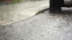 Read full article: More Rain In The Forecast For Waterlogged Southern Wisconsin Residents