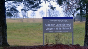 Read full article: Evers To Push Back Closure Of Lincoln Hills By 2 Years