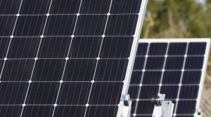 Read full article: Solar Energy Project Divides Rural Iowa County