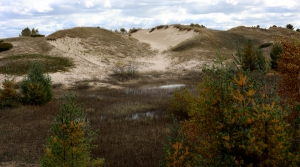 Read full article: Former DNR Employee: Staff Pressured To OK Kohler Golf Course On Rare Wisconsin Wetlands And State Park