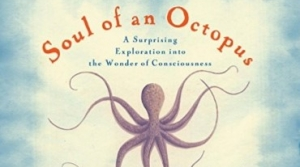 Bookcover for Soul of an Octopus