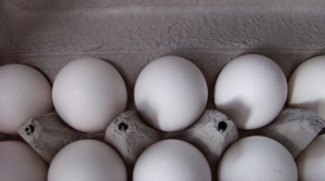 Read full article: Wisconsin Egg Producers Set New Records As Demand For Cage-Free Continues