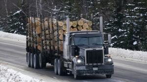Read full article: Logging Truck Proposal Would Make Roads Safer And Decrease Emissions, Advocates Say