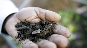 Read full article: Can You Dig It? How To Start A Compost