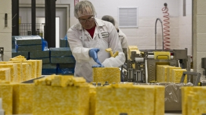 Read full article: As Cheese Surplus Hits All-Time High, Dairy Industry Is 'Cautiously Optimistic'