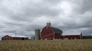 Read full article: Wisconsin Agriculture Leaders React To Next Farm Bill