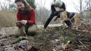 Read full article: New Conservation Program Hopes To Serve Growing Number Of Wisconsin Women Managing Land