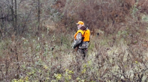 Read full article: Lawsuit Aims To Force DNR To Reinstate In-Person Hunter Education Classes