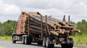 Read full article: US Rep. Mike Gallagher Pushes For Log Trucks To Be Allowed On Wisconsin's Interstates