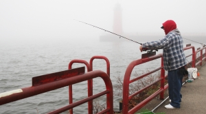 Read full article: DNR Shares Details On 2020-2022 Lake Michigan Fish Stocking Plan