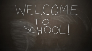 Read full article: WisContext: Why More Wisconsin Schools Are Enrolling Fewer Students