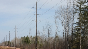 Read full article: Regulators: Proposed Power Line In Northern Wisconsin Must Follow Existing Route