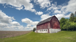 Read full article: 'Farm Girl' Remembers Rural Family Life In Wisconsin During The Great Depression