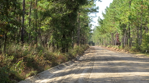 Read full article: DNR Working With Private Forestland Owners To Develop Sustainability Plans