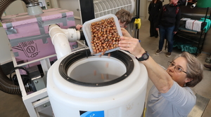 Read full article: Wisconsin, Upper Midwest Look To Crack Into Commercial Hazelnut Production