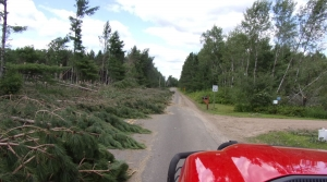 Read full article: Foresters Fear Winter, Wood Market Might Hamper Storm Cleanup